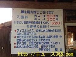 豊田町の梨狩りの値段